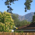 Outdoors: Buyers want to save money, and they can do that by saving water. Trim the need for landscaping water costs by planting native and drought-tolerant bushes, trees and flowers. […]